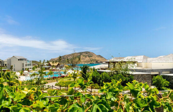 Park Hyatt St. Kitts – Citizenship Shares (US$220K)