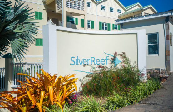 Silver Reef 2